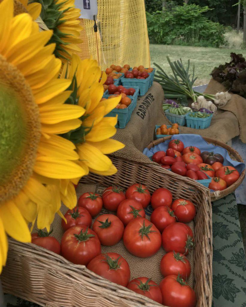 Harvest time at the Bennington Farmers' Market