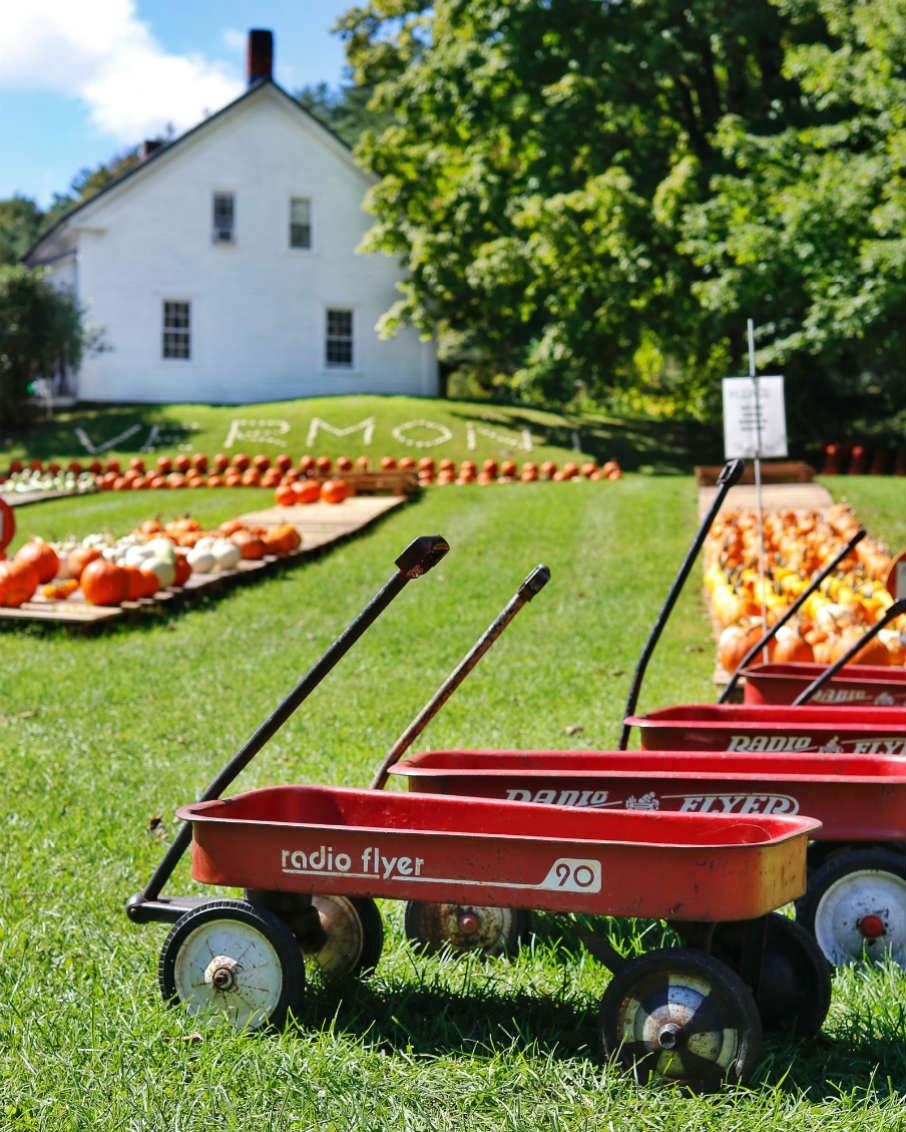 armstrons pumpkin farm vermont