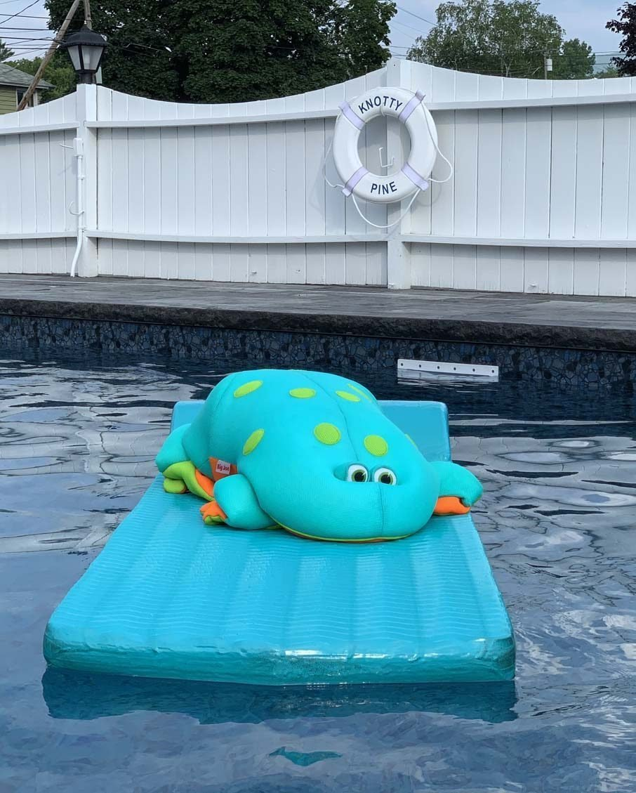 pool toy on floatie knotty pine motel