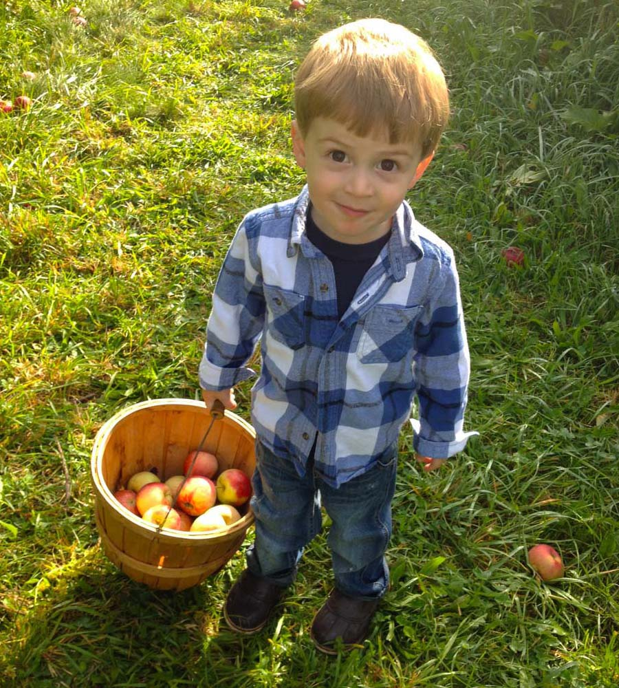 vermont apple picking toddler