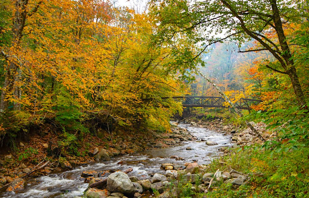 A fall foliage scene of a footbridge over a river in Bennington, Vermont on the Appalachian Trail.