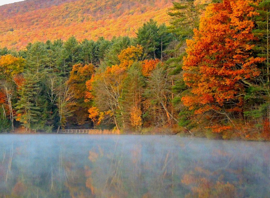 A fall foliage scene at Lake Shaftsbury State Park. Photo credit: Tara Schatz