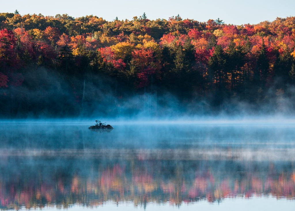 Fall foliage surrounding Adams Reservoir in Woodford State Park, Vermont.