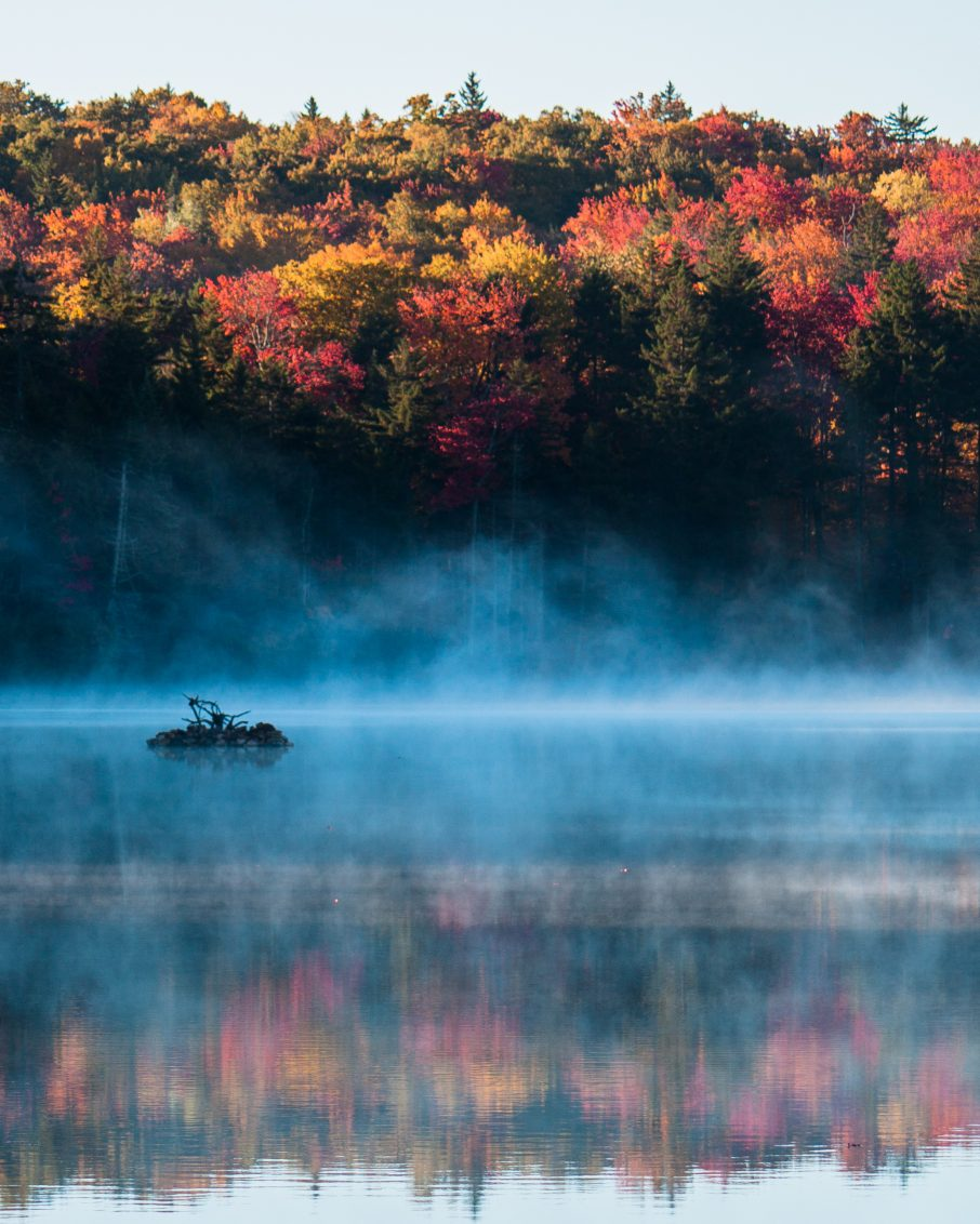 Fall foliage around Adams Reservoir in Woodford State Park, Vermont.