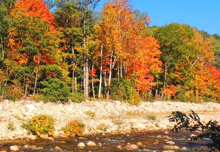 fall foliage scenic drive rocky stream in bennington vermont