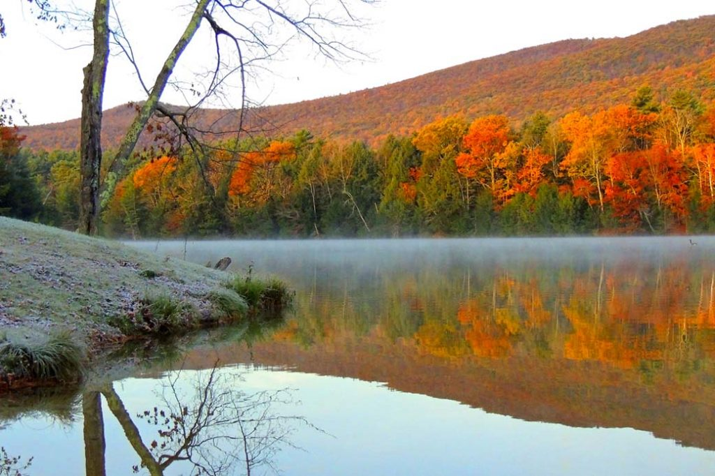 morning fog fall foliage vermont pond