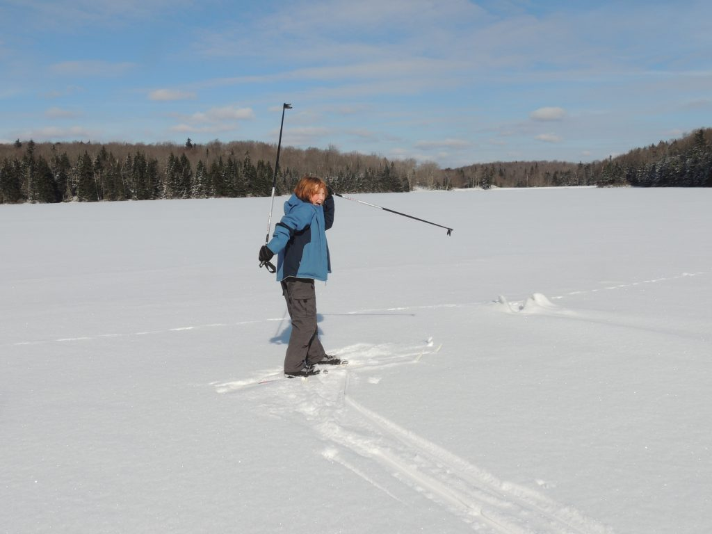 Cross-country skiing in Woodford State Park, Vermont.