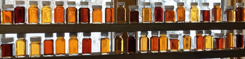 line of maple syrup bottles of varying grades.