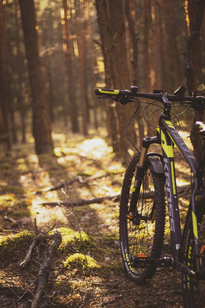 A mountain bike in the woods at sunset.