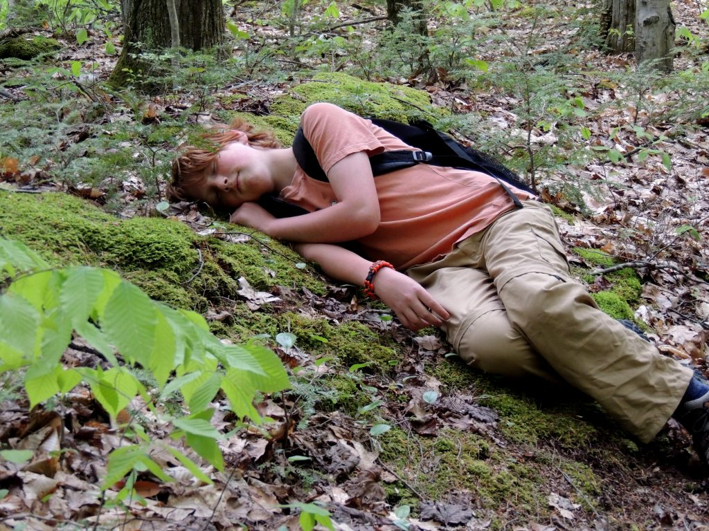A young boy lies in the forest wearing a backpack.
