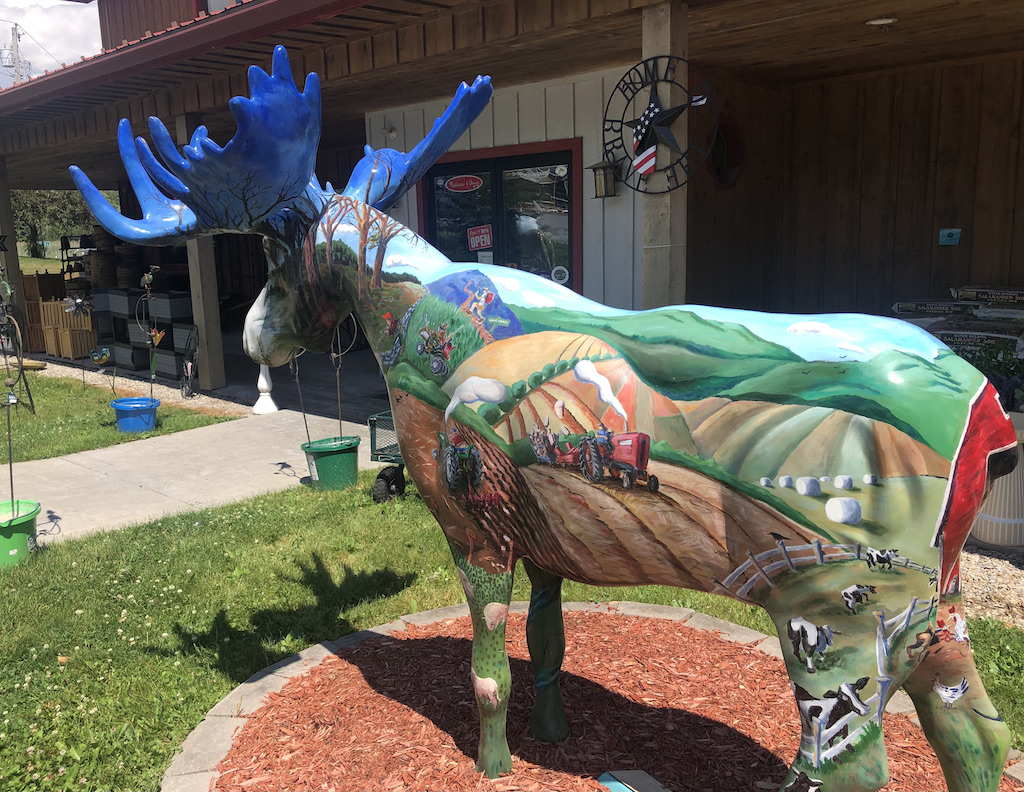 Giant moose sculpture at Whitman's Feed Store.